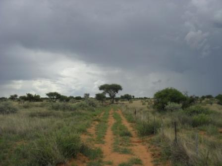 Klassisk landskap og veier på farmen.
