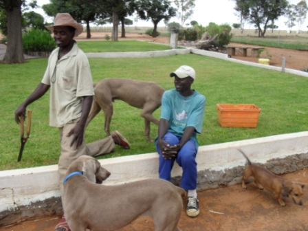 Arbeiderne Daniel og Paulus, Hippi, Tasso og Rufus.