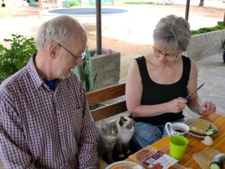Bestefar Knut og Kari Anne spiser frokost med kattene.
