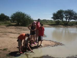 Vi utforsker på bush-pan,mye å lære for både store og små!