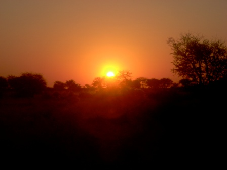 Det ble mange solnedganger på farmen, og med dem en dertil hørende sun-downer som det heter på godt Norsk...