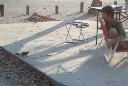 Jonas og et nysgjerrig jordekkorn på campingplassen i Halali. Godt det ikke var på farmen... Jonas begynner å bli en kløpper med blåserør og jordekkornet er fritt vilt da det graver hull og ødelegger store områder på farmen. Dyra tråkker oppi og slangene holder også til i hullene de graver.