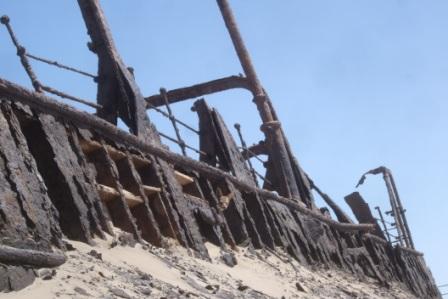 Eneste gjenlevende passasjer...? Det krydde av sjakaler langs kysten, de lever godt av sel som også finnes i store kolonier her. Vi kom også over en strandet hval, artig å kunne studere så store dyr på nært hold. Men luktet godt gjorde den ikke....