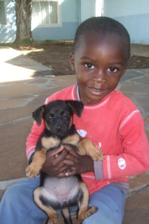 Karueto er blitt stolt hundeeier!